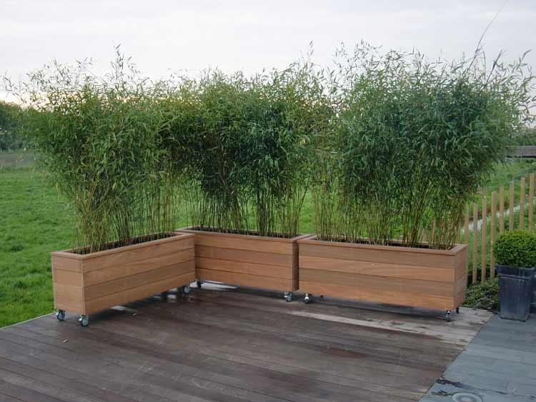 Maatwerk heijboertuinhout - Bamboe in bakken terras ...